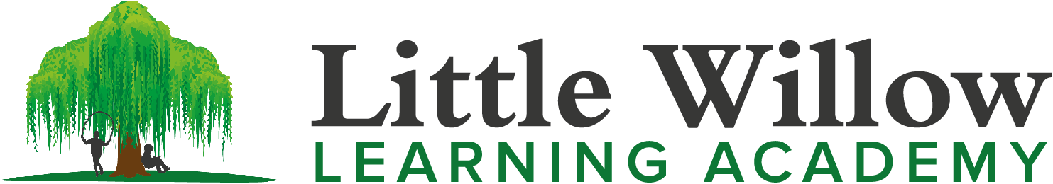 Little Willow Learning Academy